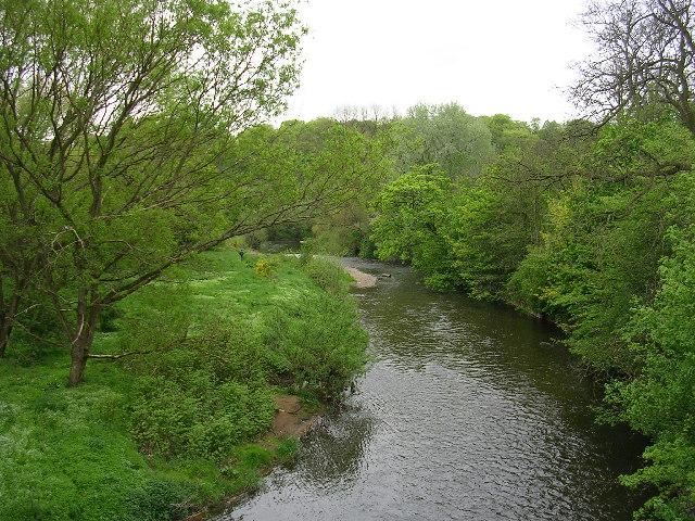 River Goyt, Stockport - geograph.org.uk - 7737