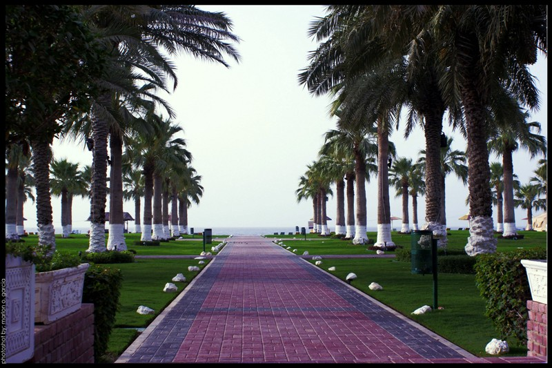 Sealine Beach A Murwab Resort