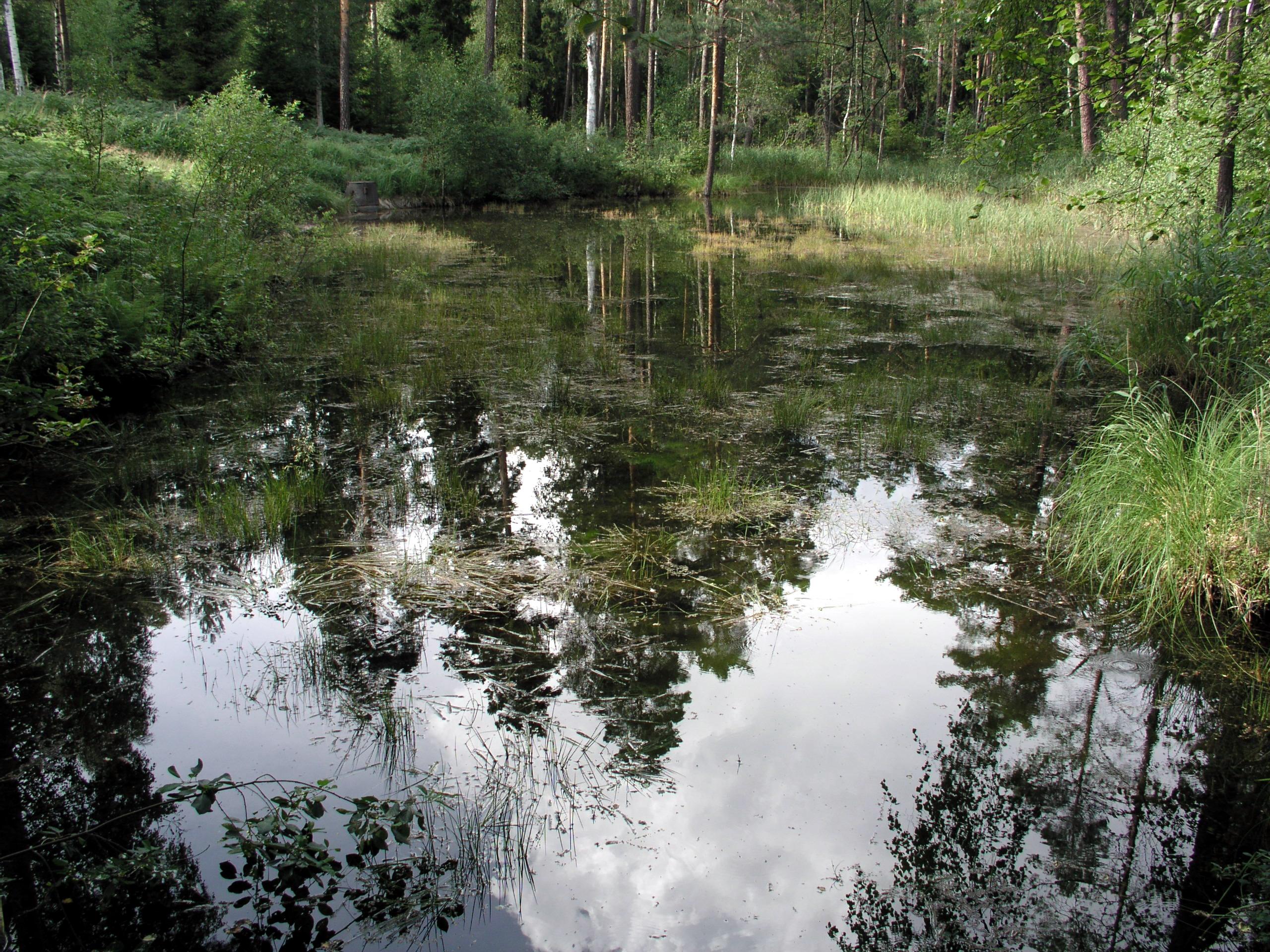 مياه جوفية ويكيبيديا