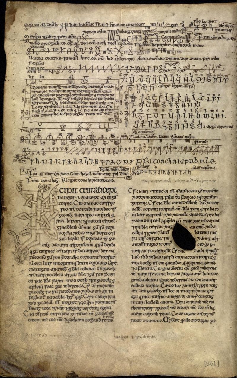 Артефакты и исторические памятники - Страница 5 Book_of_Ballymote_170v
