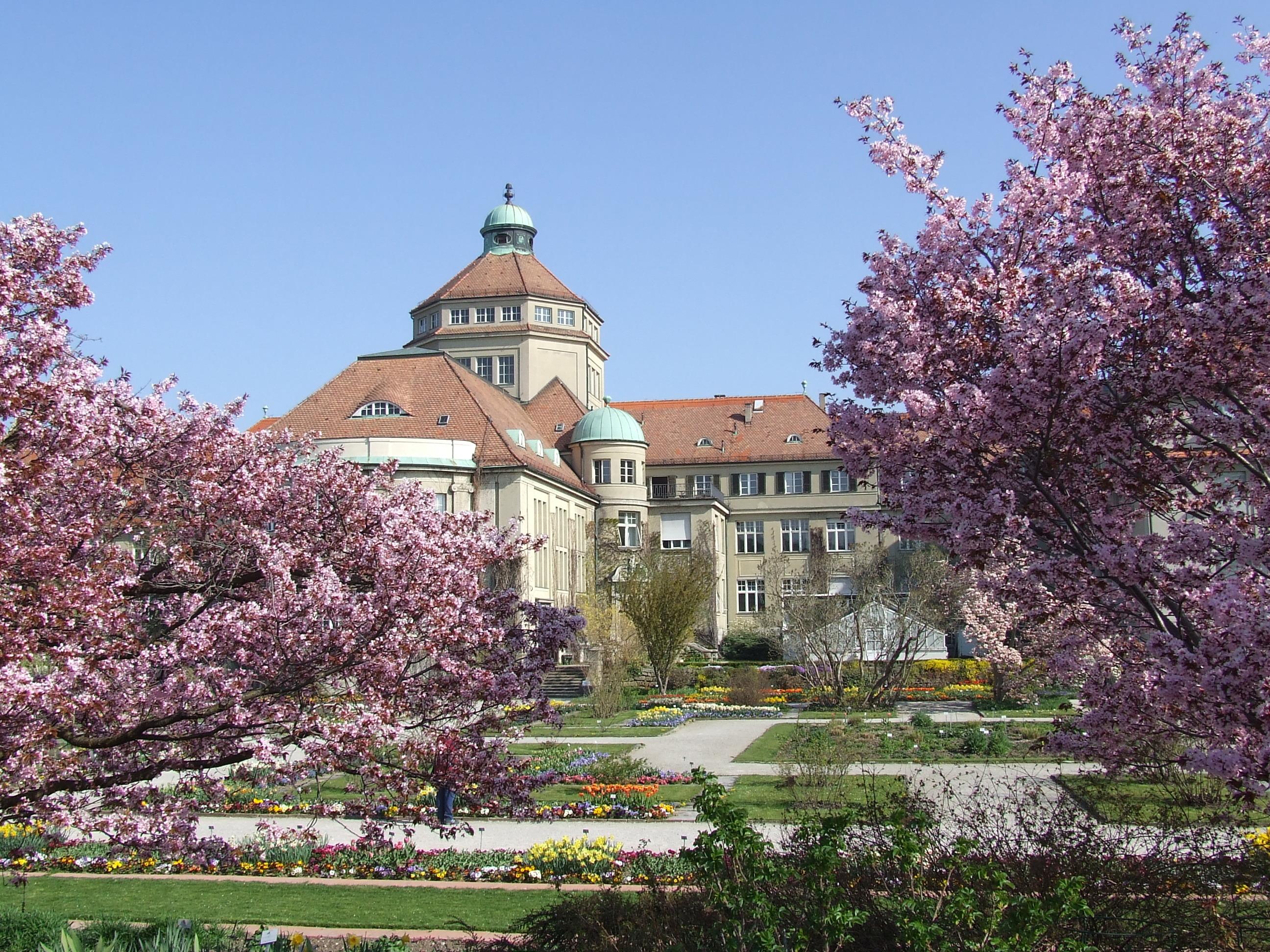 File Botanischer Garten München Nymphenburg Schmuckhof jpg Wikimedia Commons