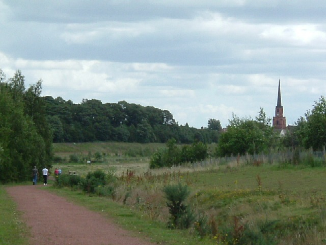 Brodsworth Community Woodland - geograph.org.uk - 507780