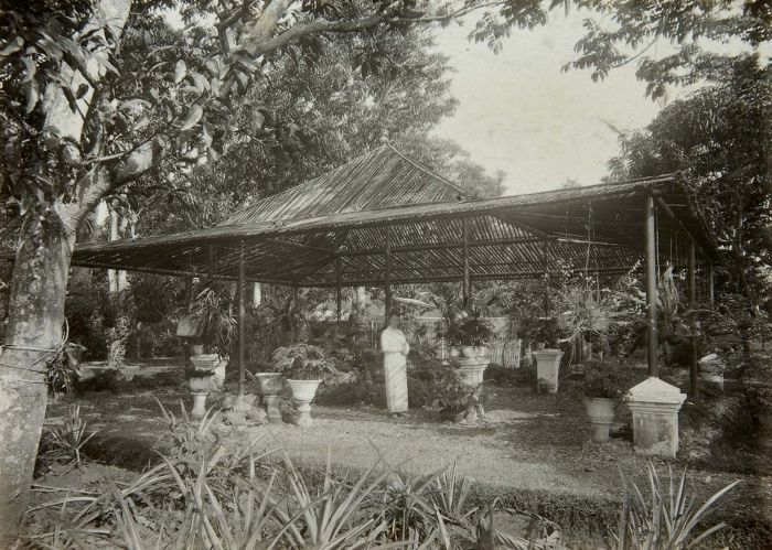 File collectie tropenmuseum vrouw met parasol onder afdak for Huis in de tuin