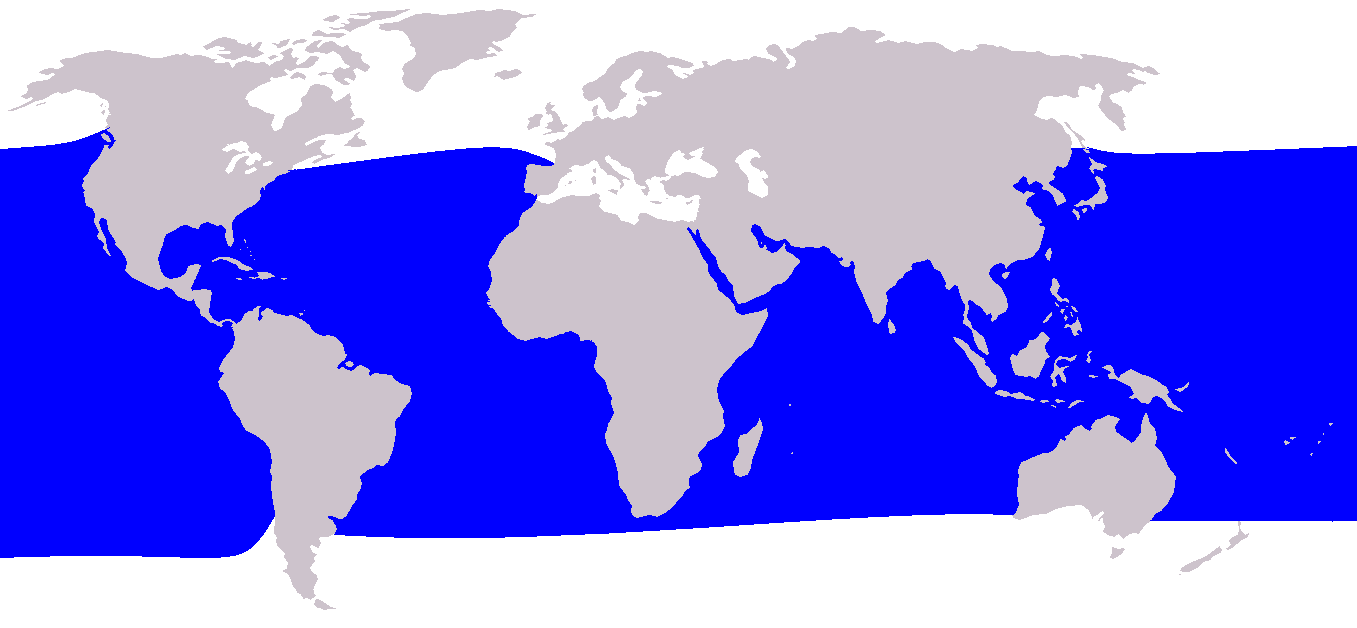 Cetacea range map Short-finned Pilot Whale.png