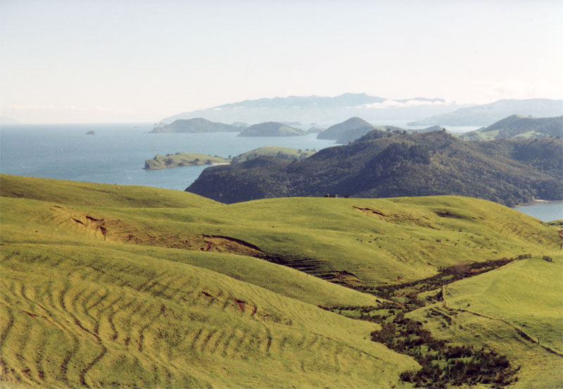 The alternative career path: Coromandel NZ (http://upload.wikimedia.org/wikipedia/commons/d/dd/Coromandel_Peninsula.jpg)