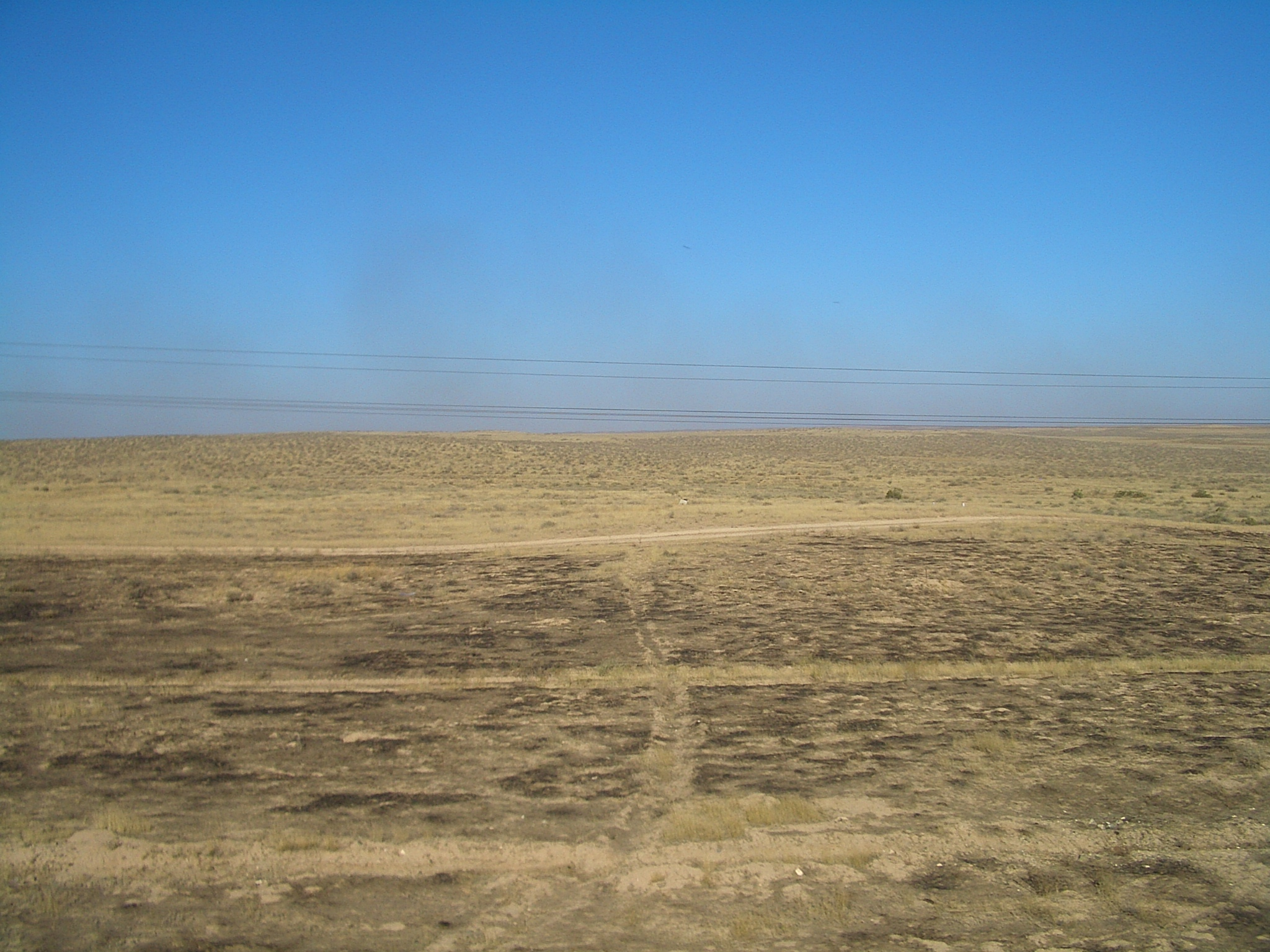 Central Asia Steppe