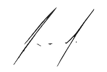Enrique Peña Nieto signature