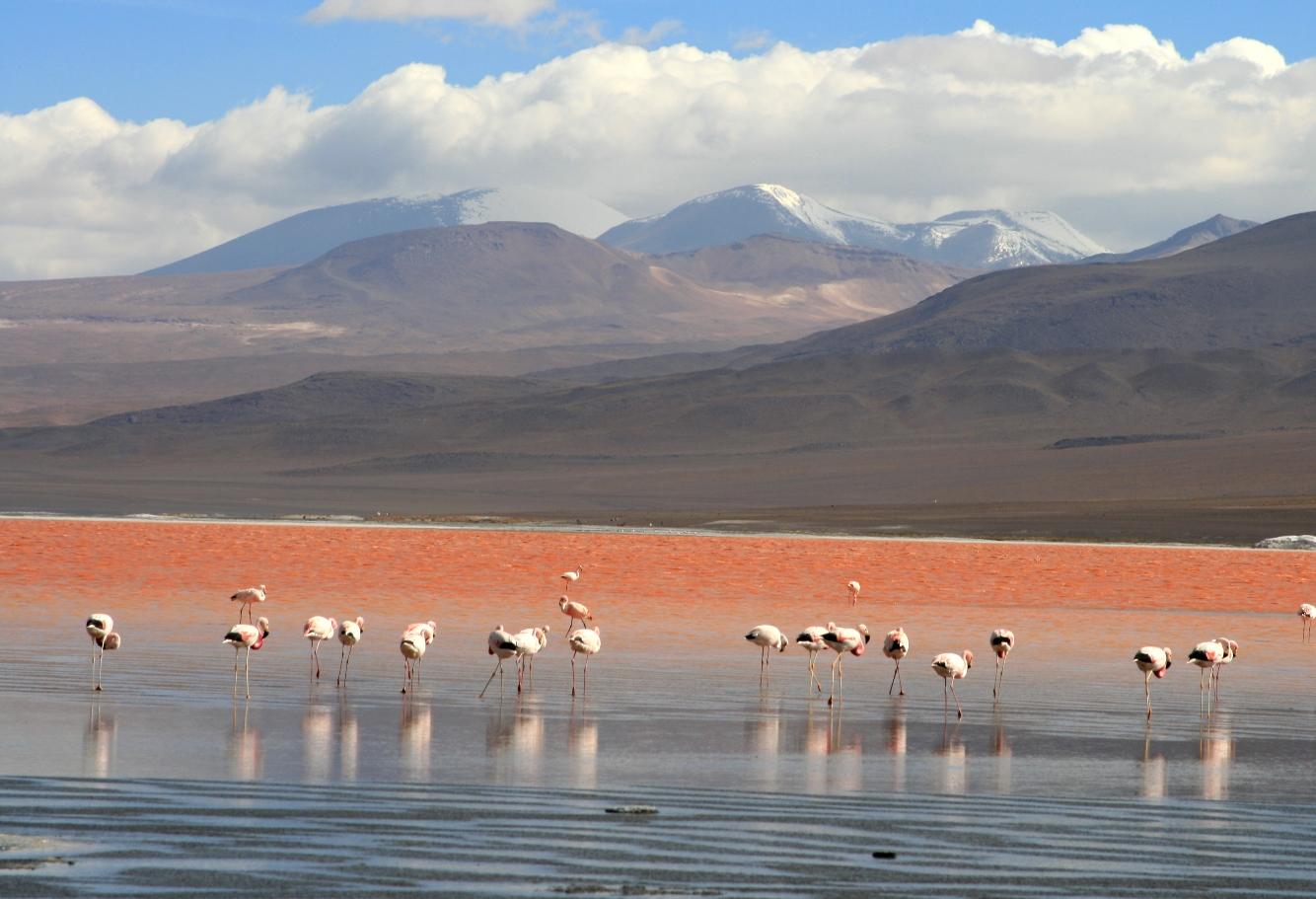 السياحة في بوليفيا