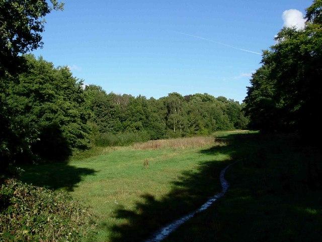Footpath on Hampstead Heath - geograph.org.uk - 53758