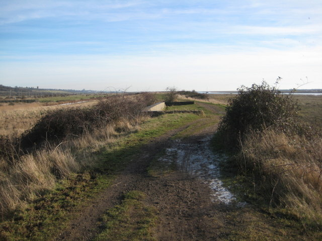 Footpath to Leigh on Sea - geograph.org.uk - 1211942