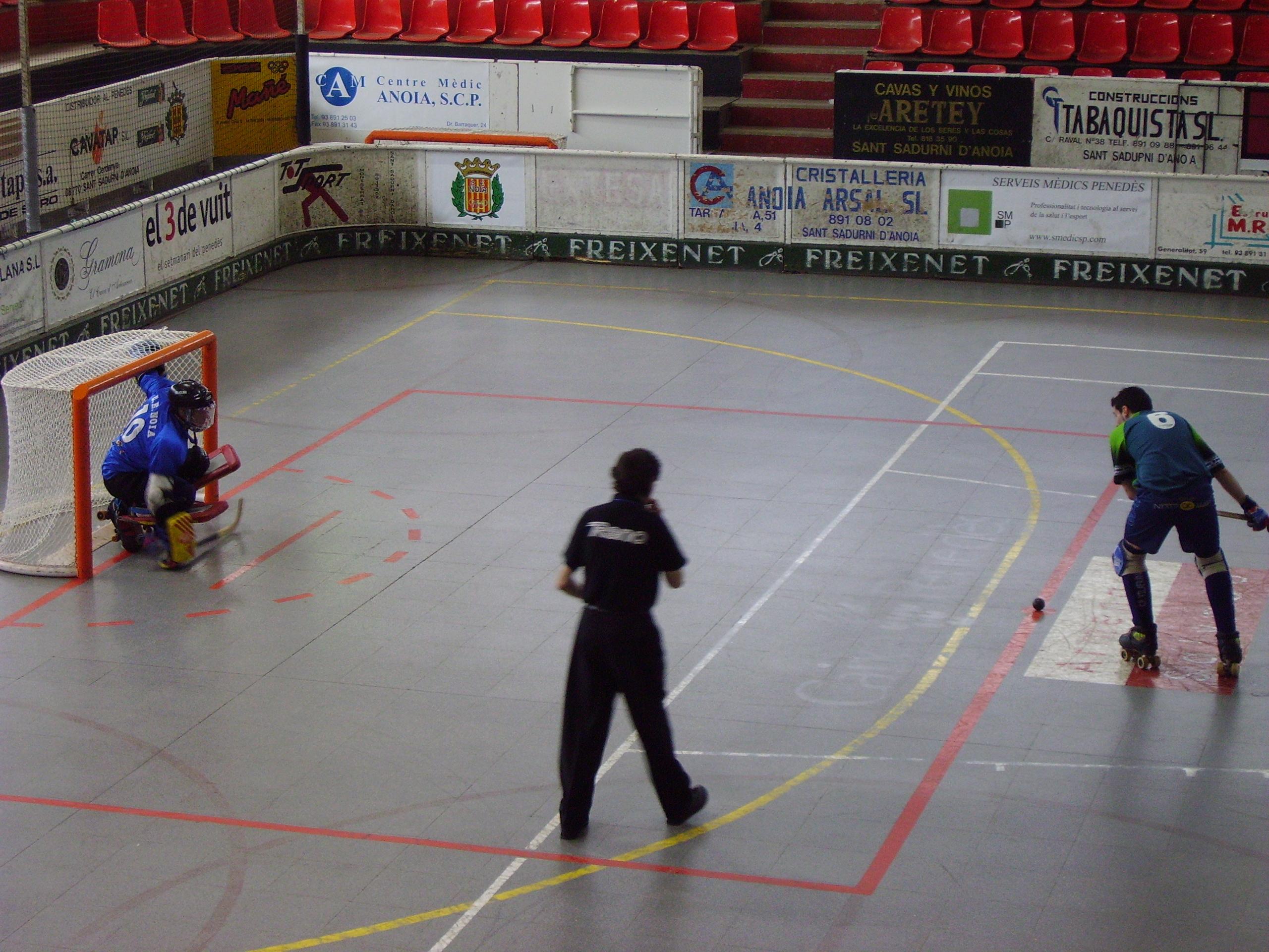 Filehoquei patins penal roller hockeyg wikimedia commons filehoquei patins penal roller hockeyg malvernweather Choice Image