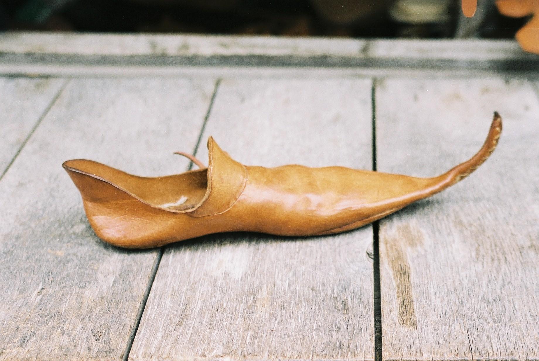 Generic Shoe Size