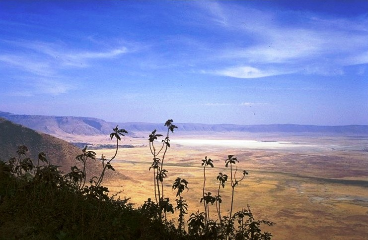 File:Ngorongoro crater.jpg