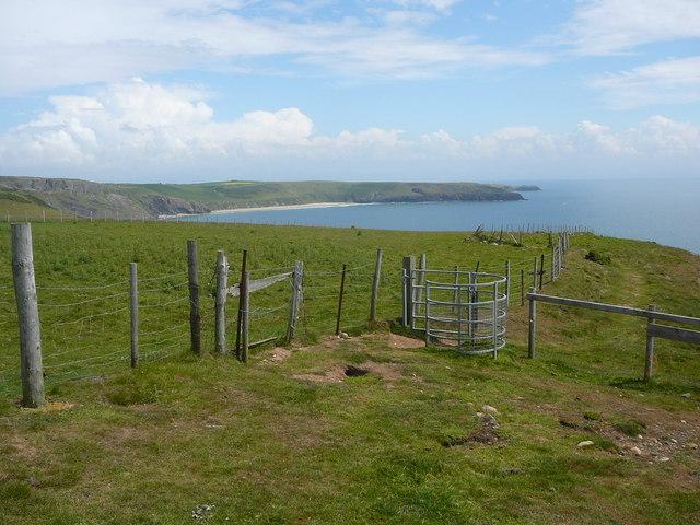 On the Llyn Coastal Path north east of Trwyn Cilan - geograph.org.uk - 1634553