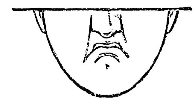 PSM V36 D705 Contemptuous expression of the mouth.jpg