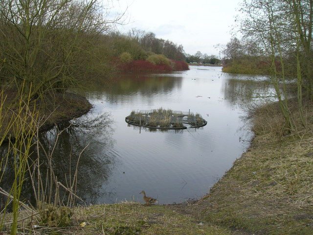 Rufford Abbey Country Park - the Lake - geograph.org.uk - 1767885