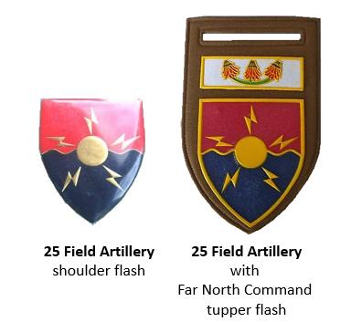 SADF 25 Field Artillery insignia