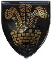 Oudtshoorn Commando