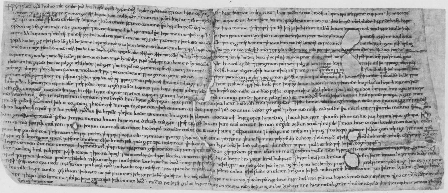 Ælfgifu of Shaftesbury