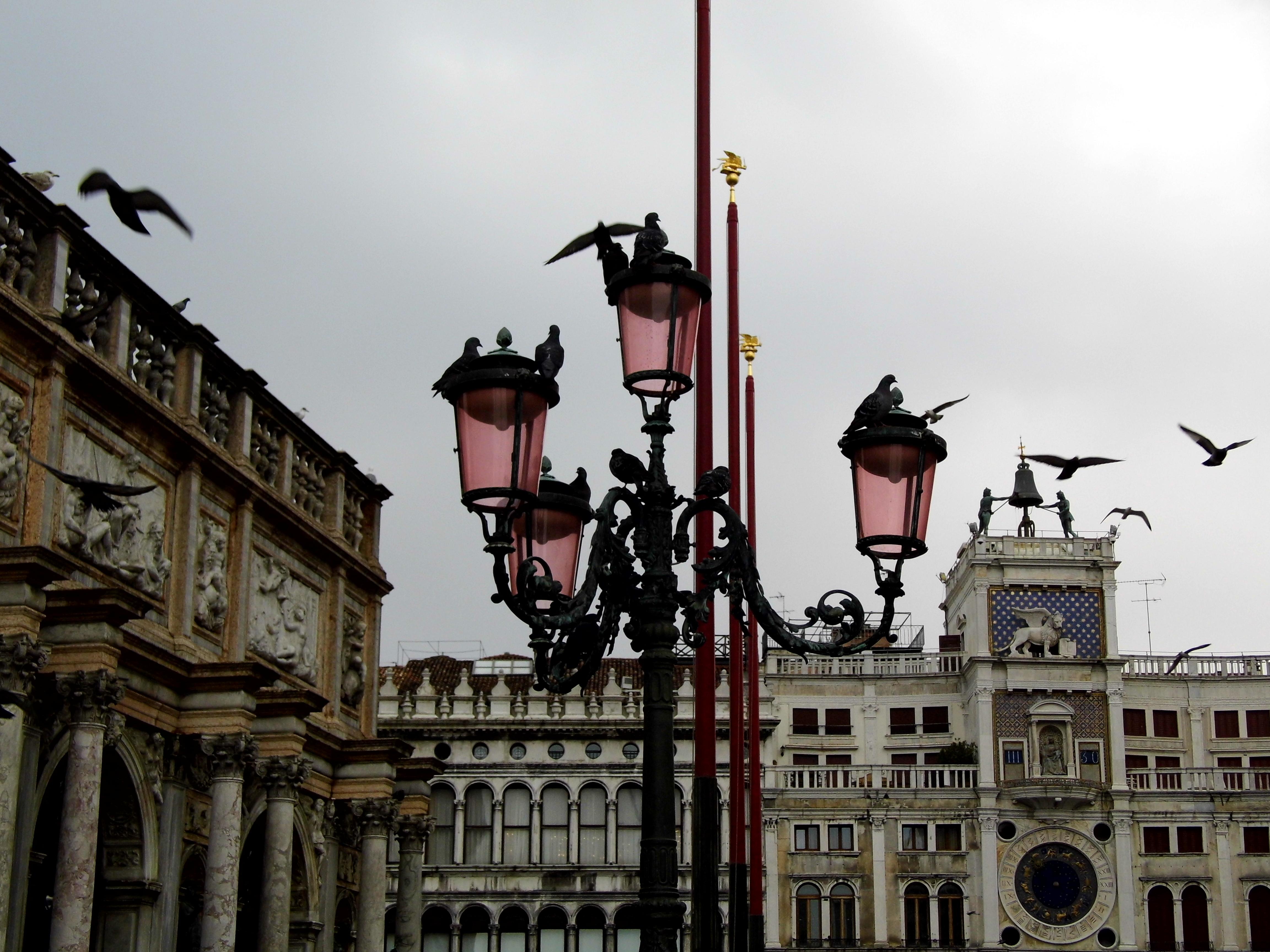 Asombroso Marco 16 20 Foto Ideas - Ideas de Arte Enmarcado ...