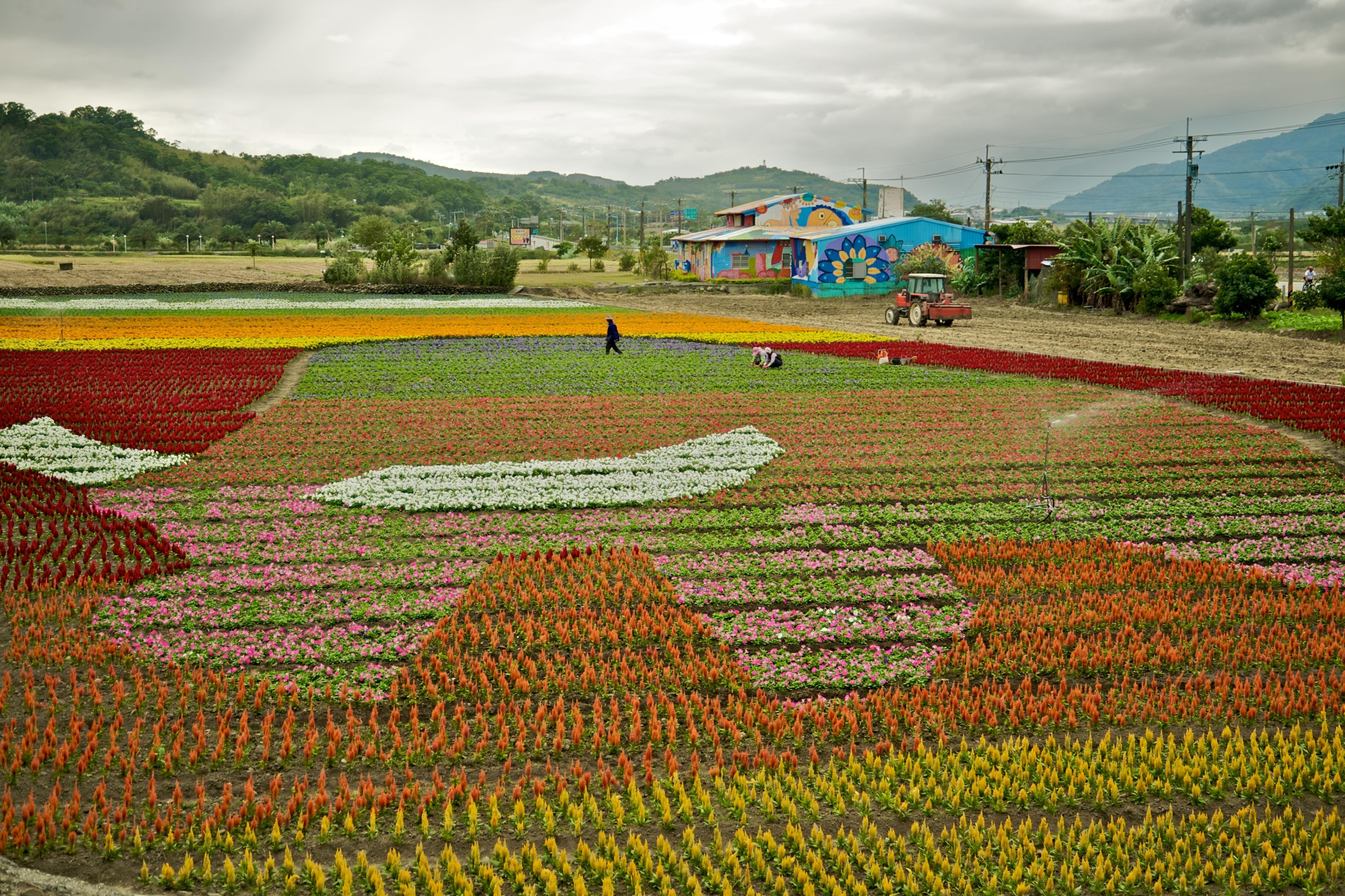 Garden - Wikipedia