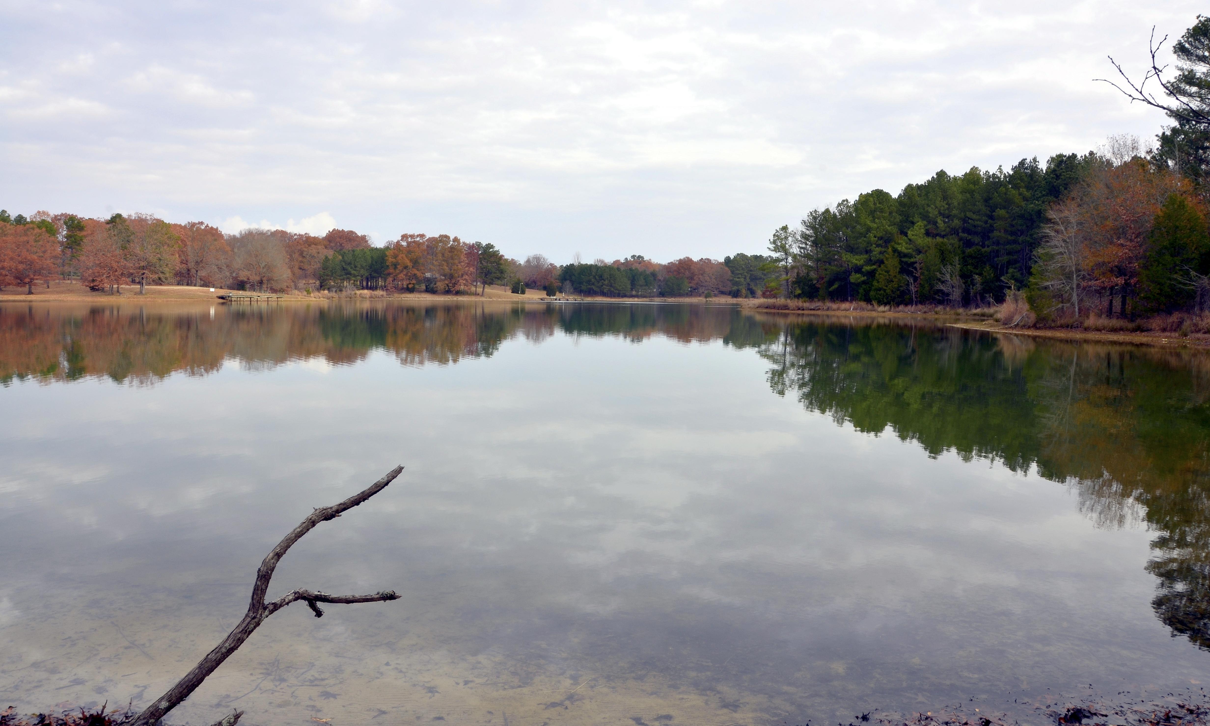 Trace State Park Wikipedia