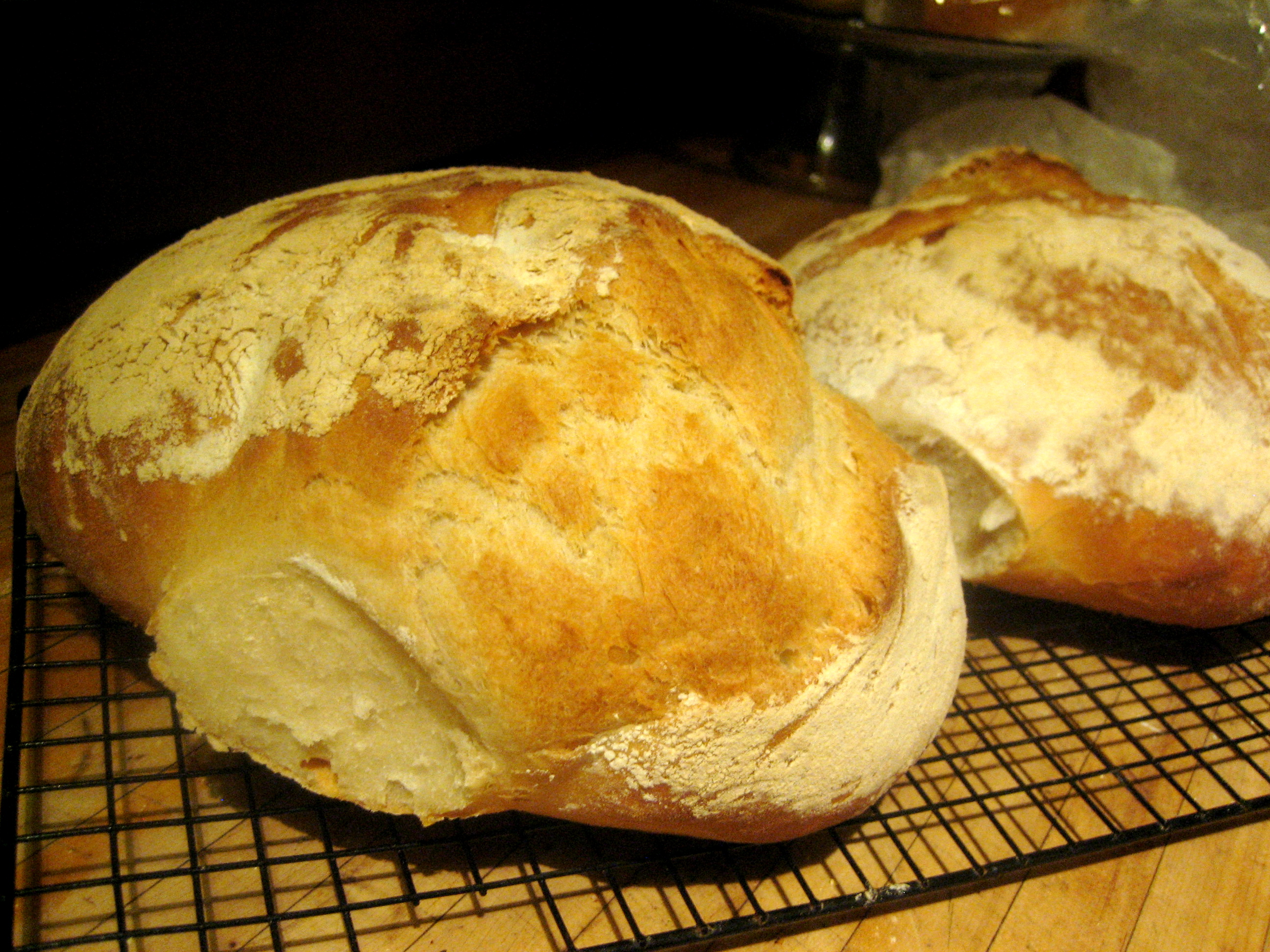 How To Jump A Starter >> File:Two loaves of pagnotta made with a biga, or starter dough. heavenly..jpg - Wikimedia Commons