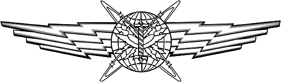 USAF - Cyberspace Operator Wings Basic.png