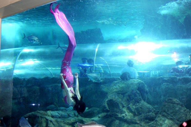 Nanjing Underwater World - Wikipedia
