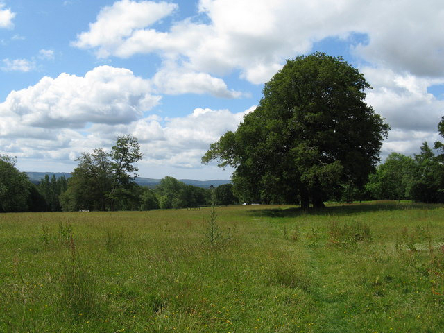 File:View SW across tree filled meadow west of Ragget's Wood - geograph.org.uk - 1364648.jpg