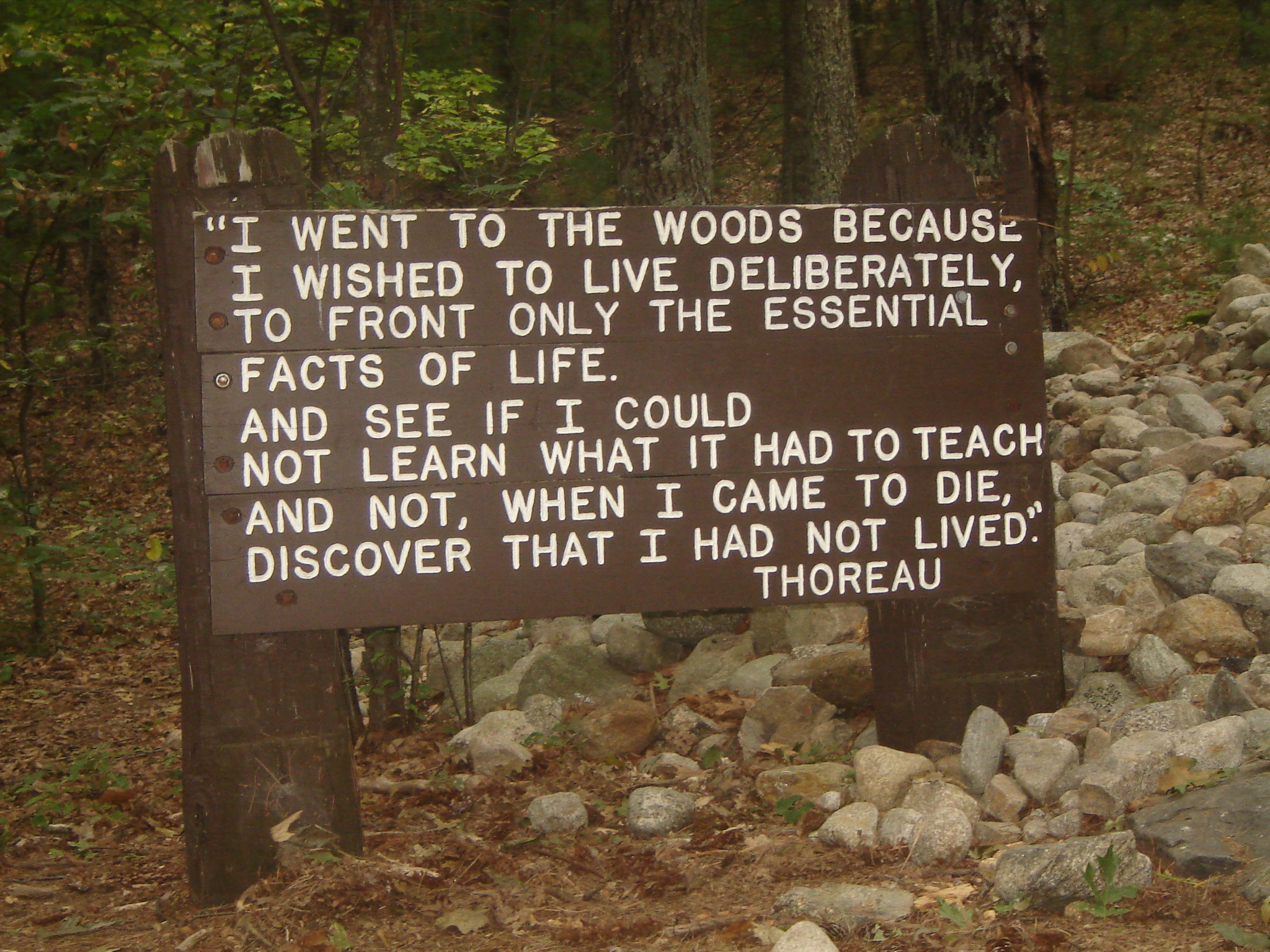 What Was Thoreau S Use Of Natural Imagery In Walden Pond