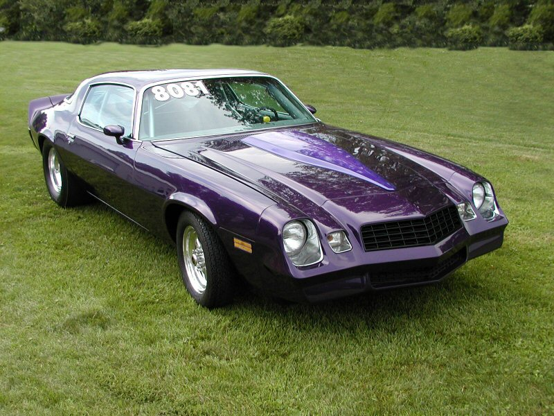 File 1981 Chevrolet Camaro Jpg Wikimedia Commons
