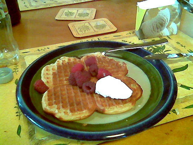 Fil:20060700 waffle with icecream and raspberries.jpg