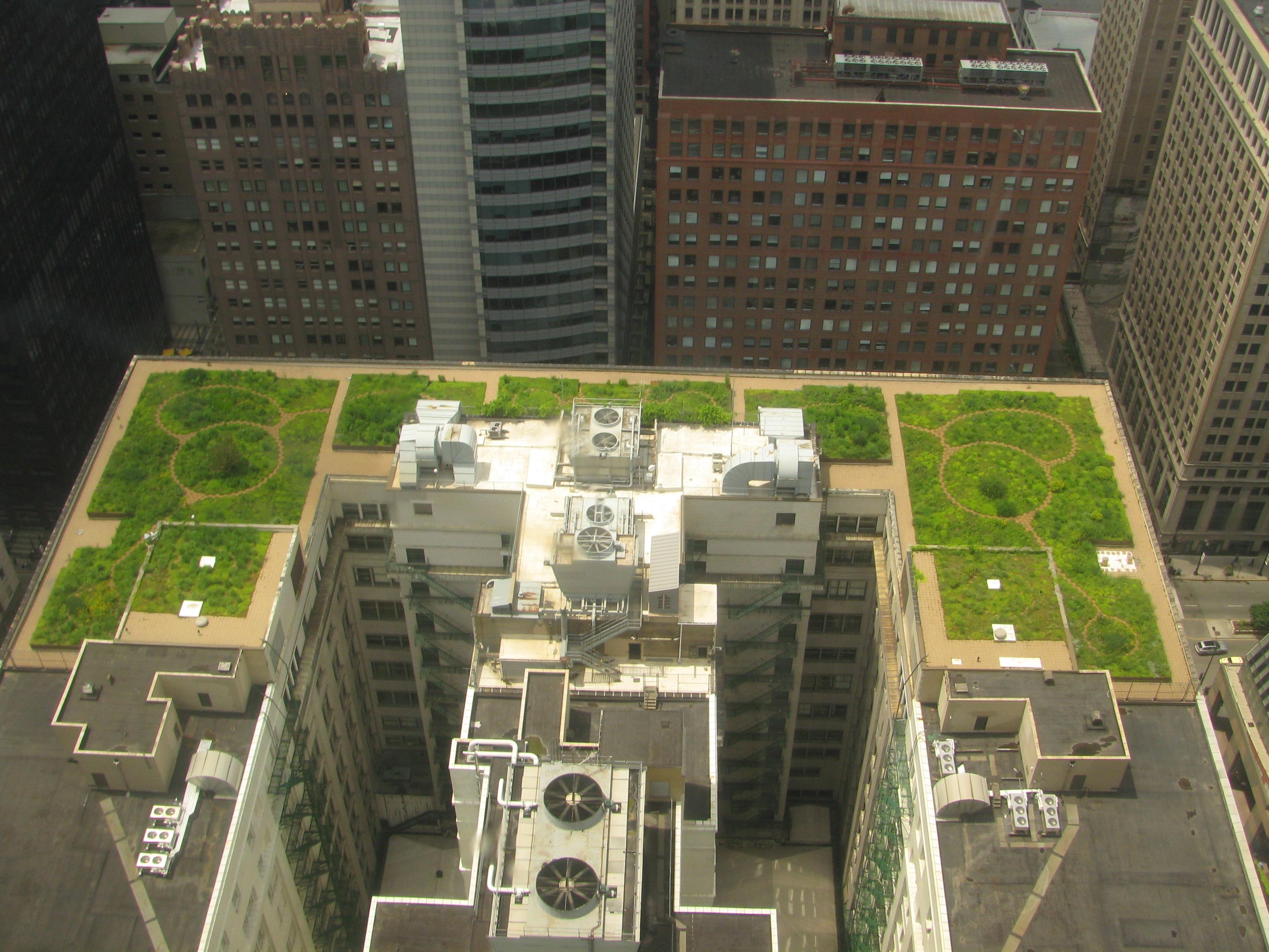 Toit vert de l' Hôtel de Ville à Chicago, Illinois.