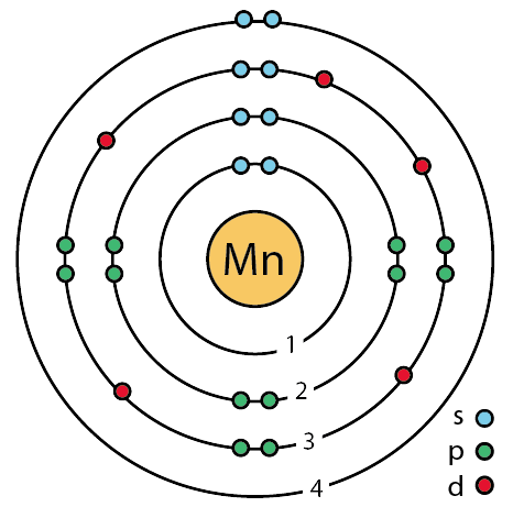 How do you draw and label a Bohr model for Mn? | Socratic