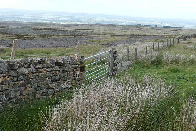 Boundary on Barningham Moor - geograph.org.uk - 871921