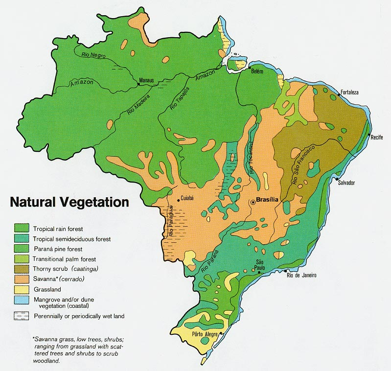 Natural vegetation map of Brazil, 1977