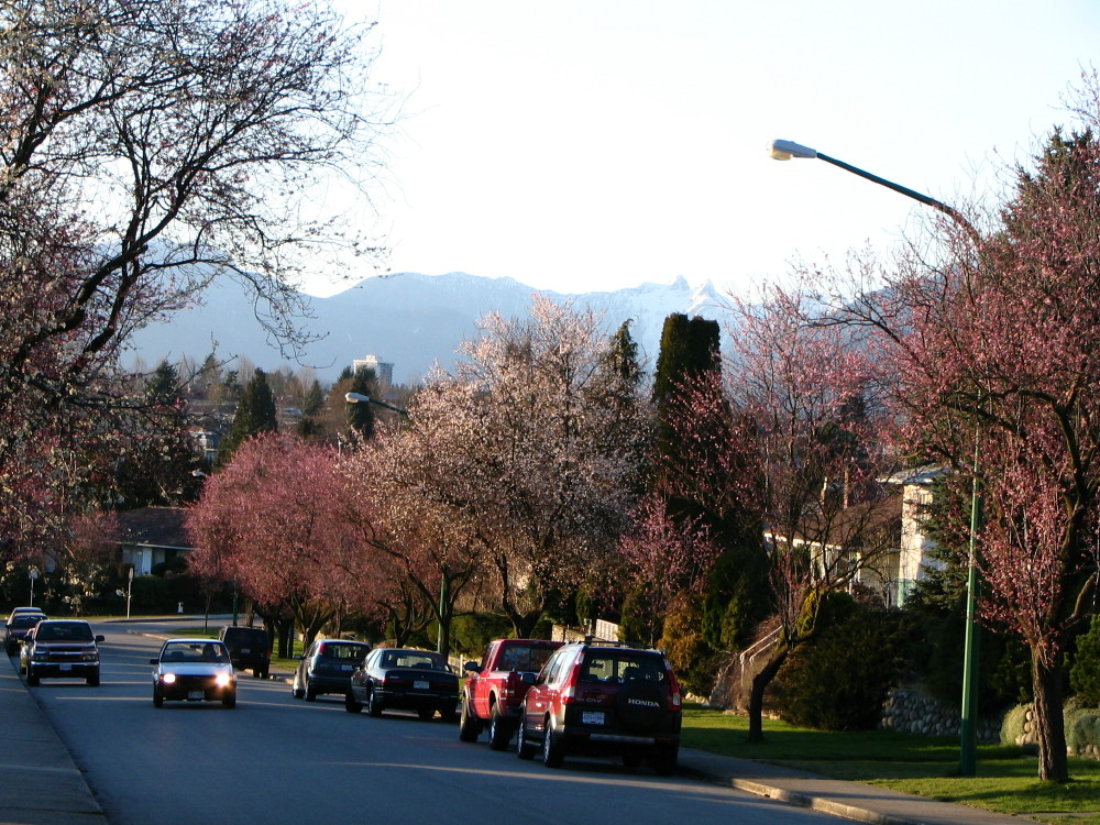 Burnaby (BC) Canada  city photos gallery : Brentlawn Drive in Burnaby BC Canada Wikimedia Commons