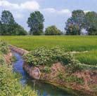 La terra per nutrire il pianeta parte quarta wikibooks for Irrigazione per sommersione