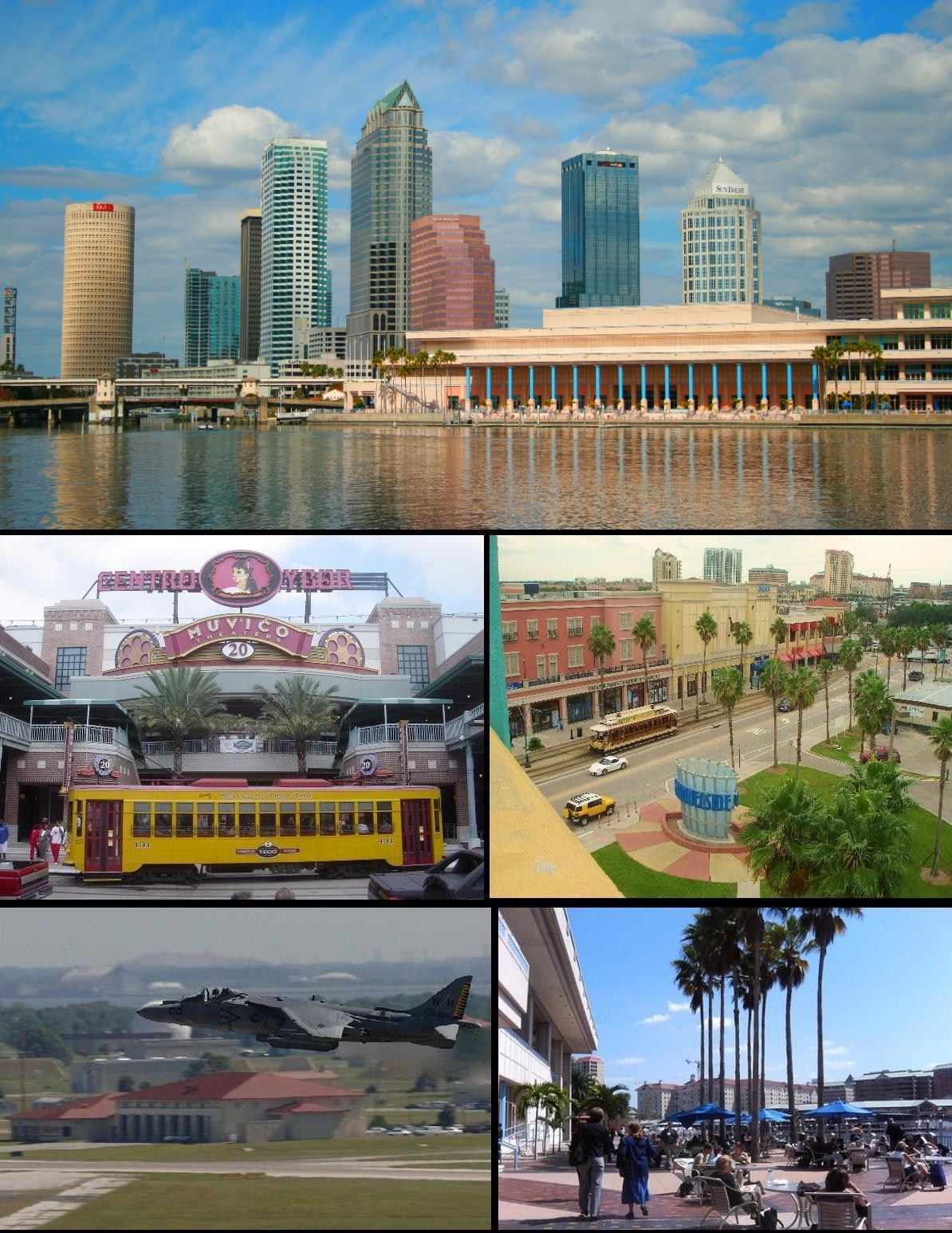 Dating and the city tampa