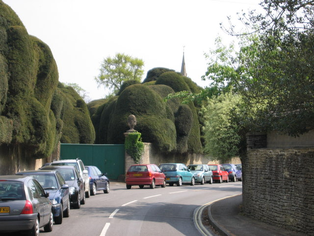 Corsham Court Topiary - geograph.org.uk - 457088