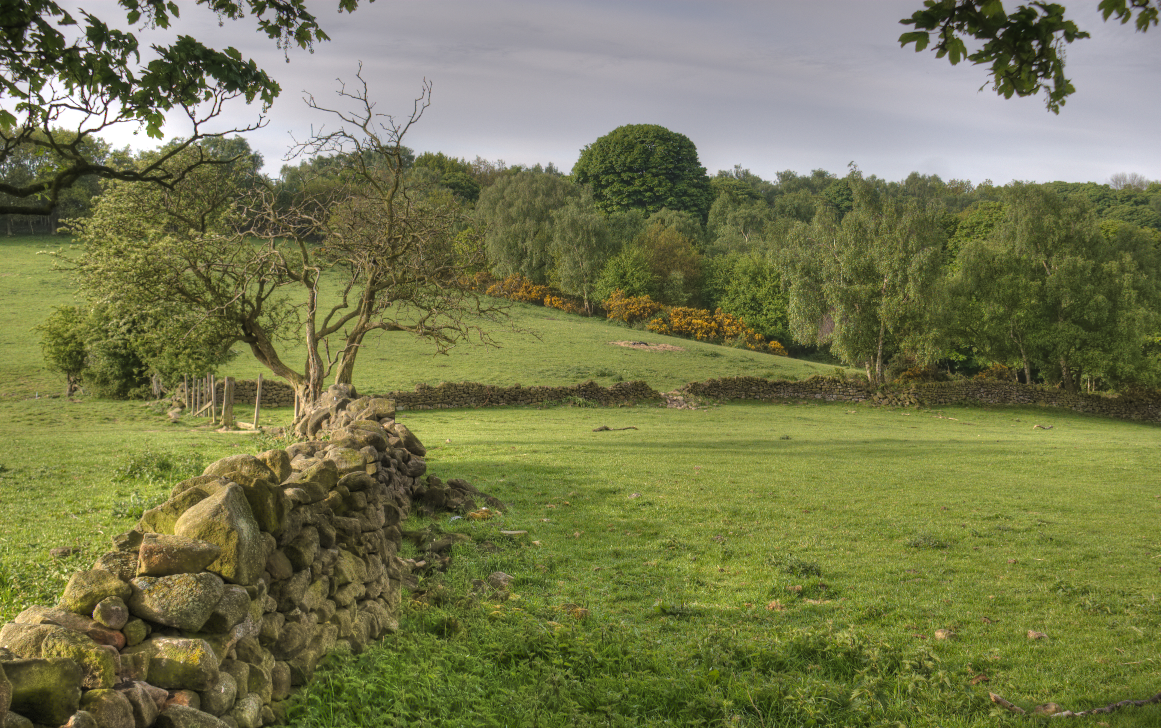 File derbyshire wikimedia commons for Garden design derbyshire