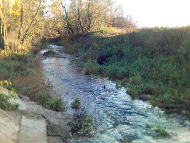 Gynėvės upė į rytus nuo Ariogalos.Foto:Hugo.arg
