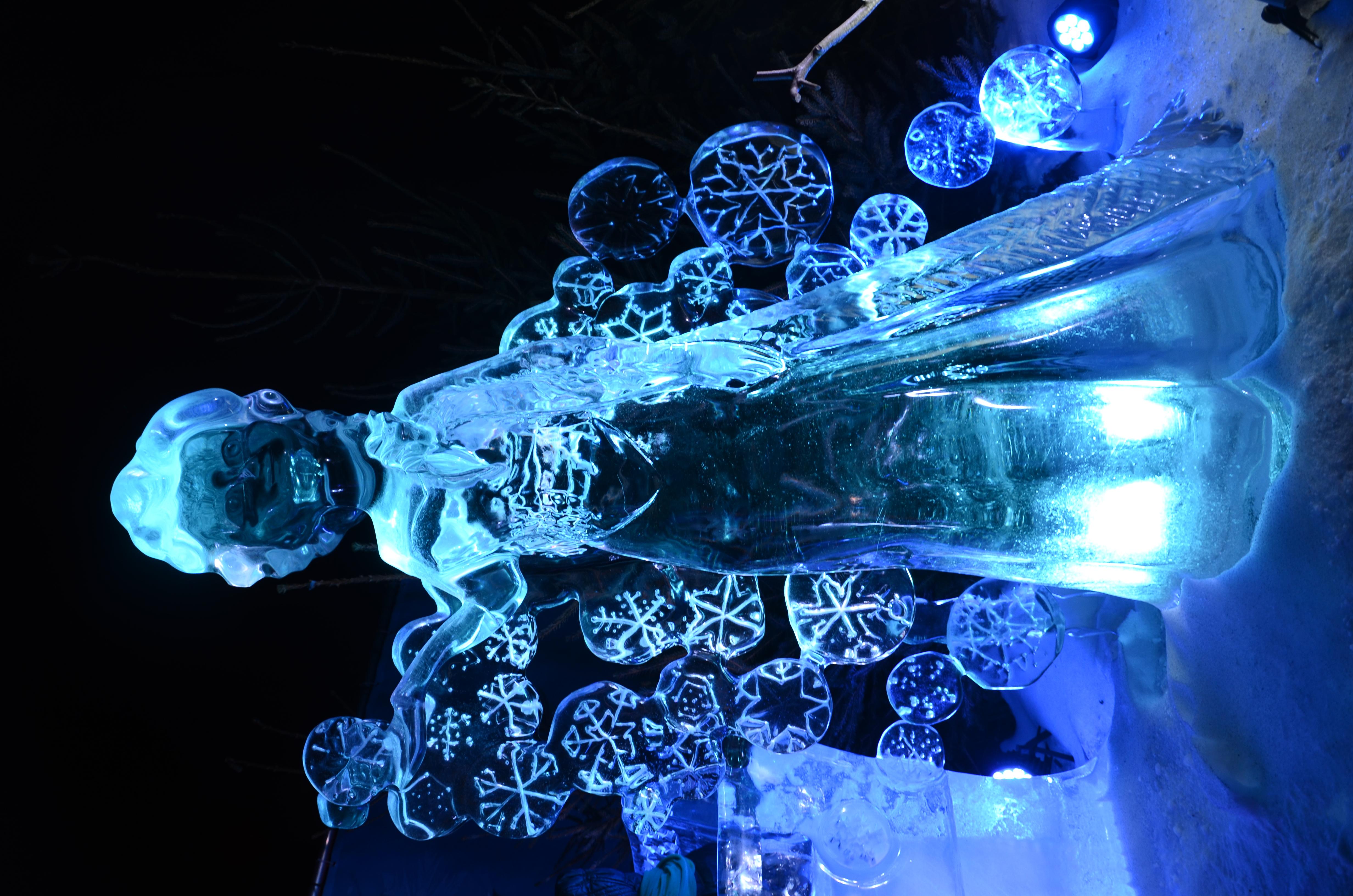Frozen Motorcycle