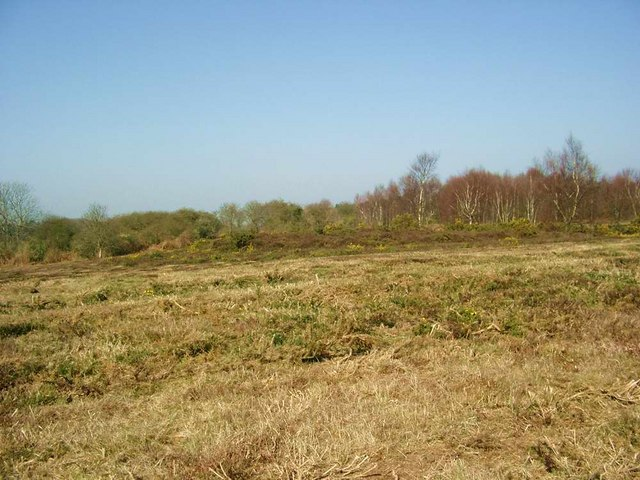 Kelling and Salthouse Heaths - geograph.org.uk - 387103