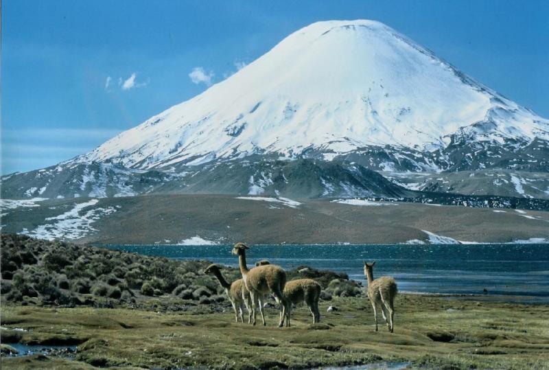 El clima en bolivia 4 - 3 6