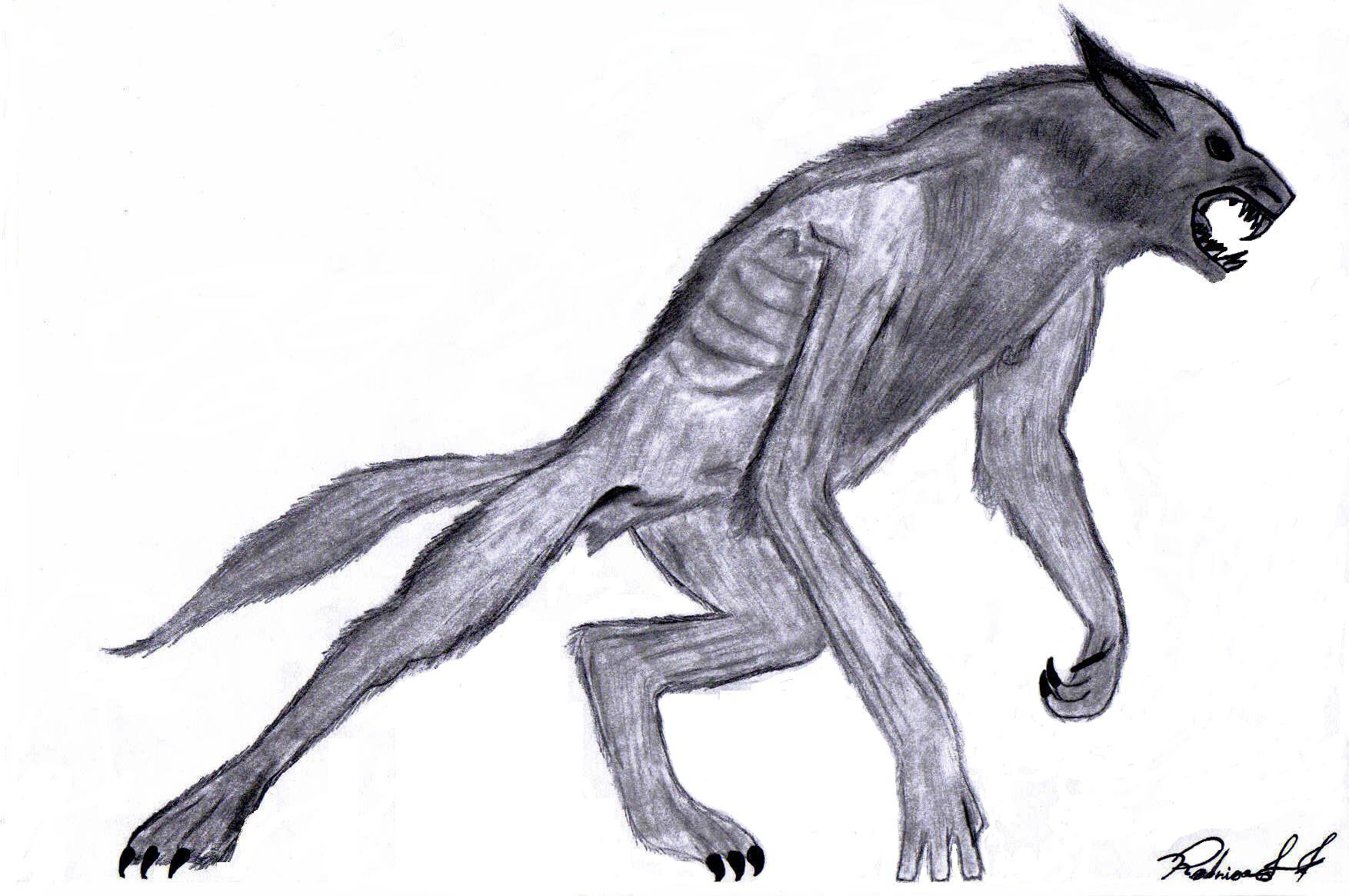 Drawing of a Werewolf
