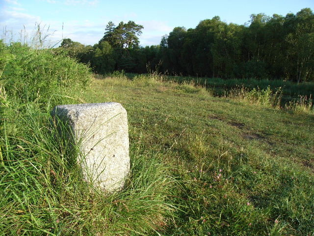 Milestone on the Royal Canal at Oldtown, Co. Meath - geograph.org.uk - 1387802
