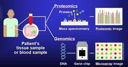 Molecular_Diagnostics.jpg