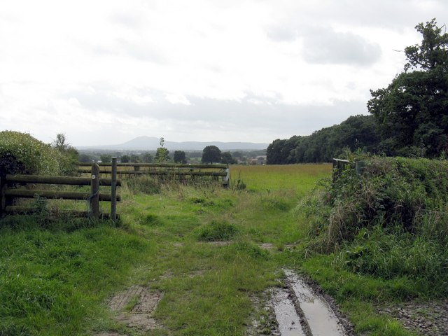 Muddy footpath - geograph.org.uk - 959135